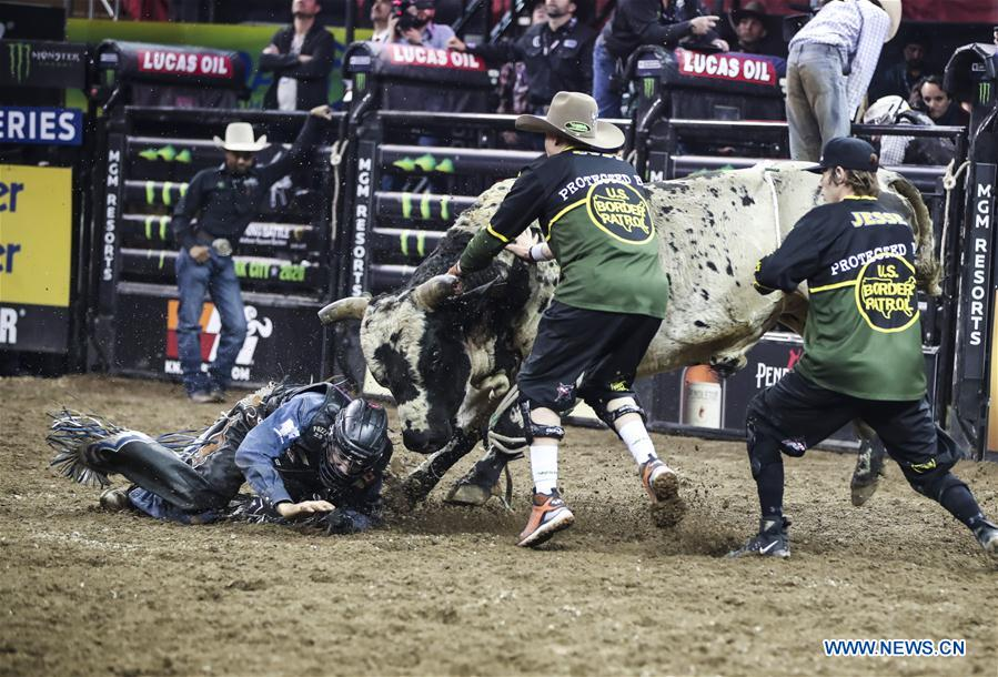 Beast bull riding event held in New York