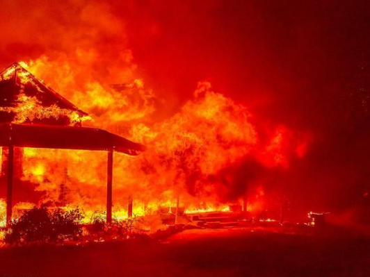 Island national park 'taken out' by Australia fires
