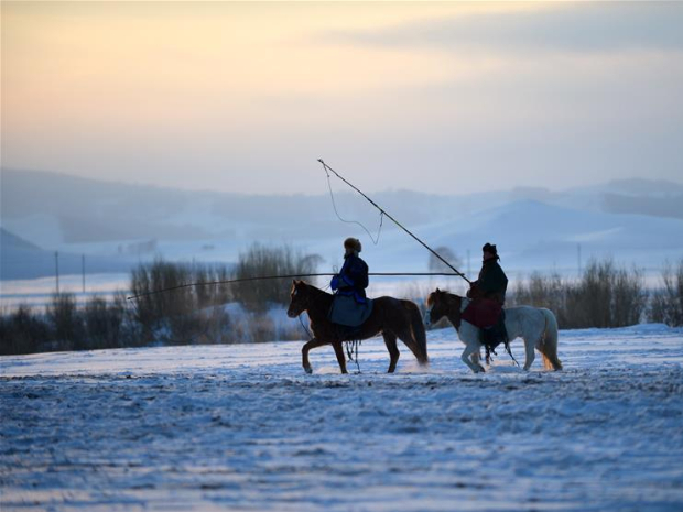 Photography festival themed on horse culture opens in Inner Mongolia