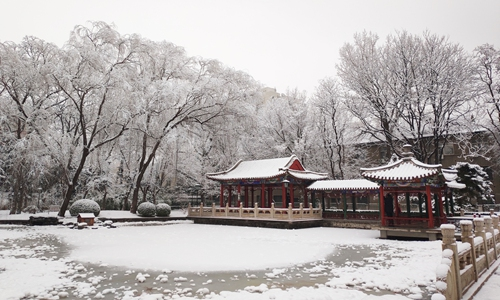Beijing embraces first snowfall of 2020