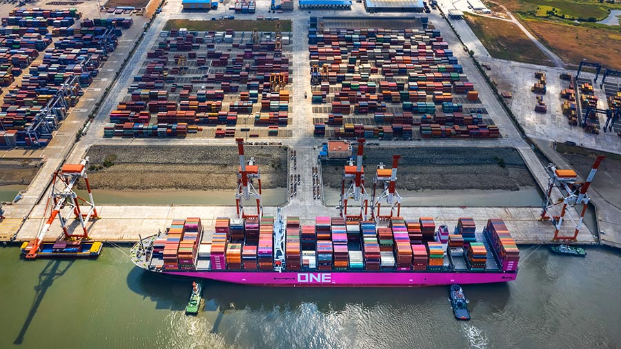 US tariffs significantly dampened export growth: study