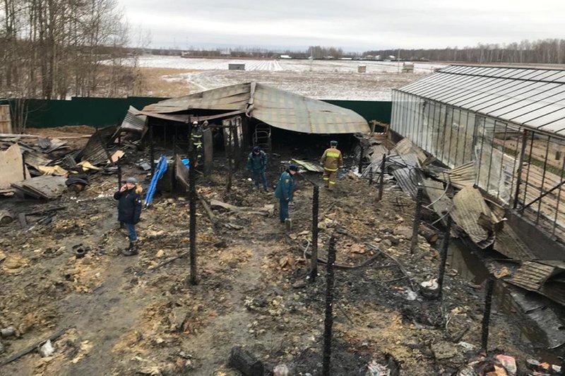 Fire at Russia greenhouse farm kills 8 people; 1 injured