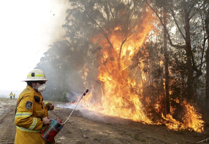 bushfire-AP.jpeg