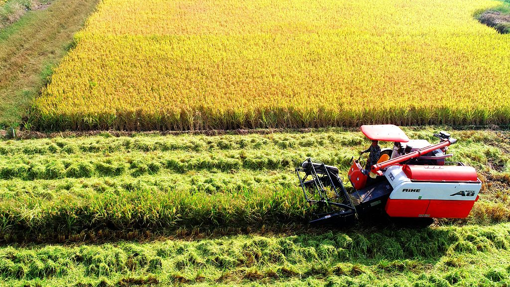 China to step up meteorological efforts in support of agriculture, poverty relief