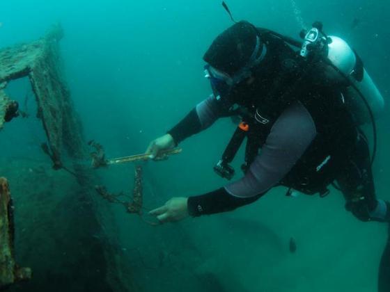 Underwater patrols restore ocean ecology in Hainan