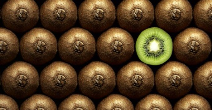 Kiwifruit prices hit record high in New Zealand