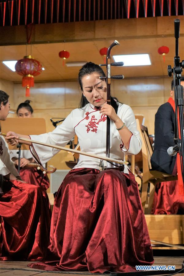 Chinese Lunar New Year concert held in Opole, Poland