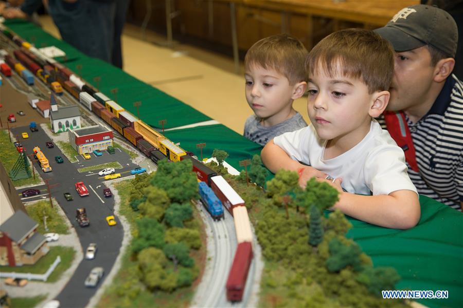 Dallas Area Train Show closed in Texas, U.S.