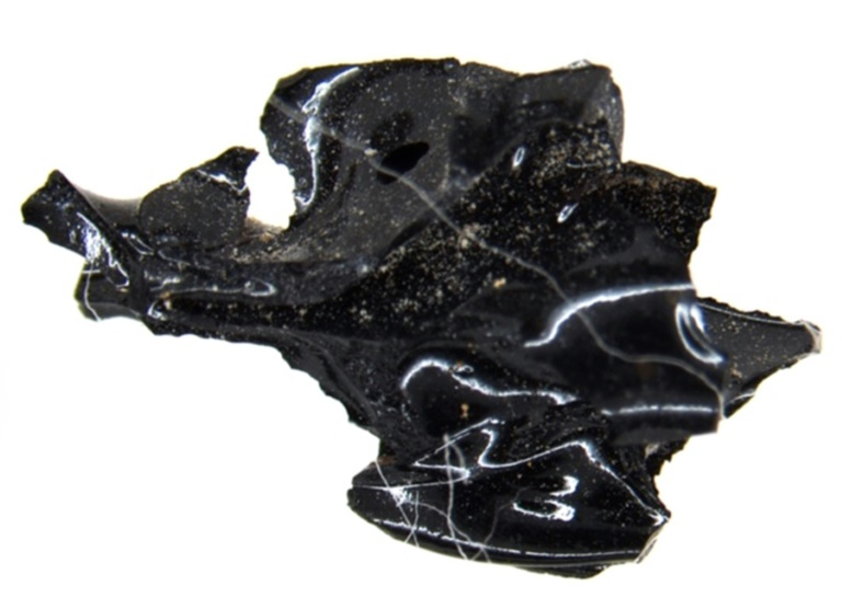 Black 'rock' from AD 79 Italy eruption is part of exploded brain