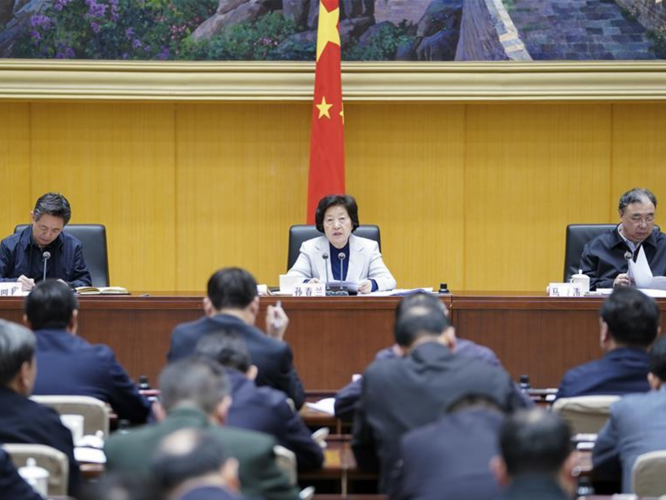 Chinese vice premier urges transparency in battle against coronavirus