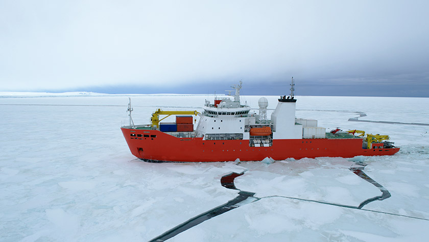 China is important contributor to knowledge base of Arctic research: Norwegian researcher