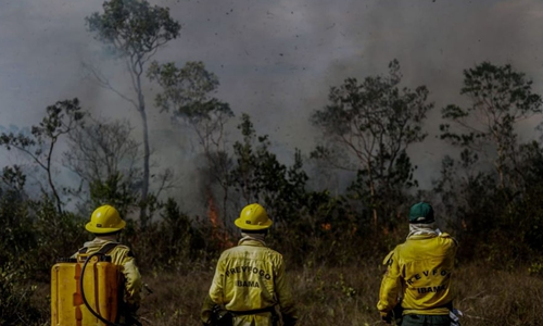Chile issues red alert over forest fire