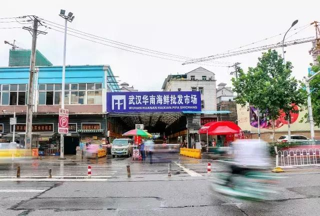 Wuhan seafood market may not be only source of novel coronavirus: expert