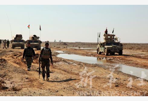 11 militants killed in S. Afghanistan: gov't