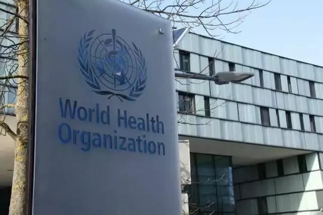 WHO calls for no restrictions on China's trade and travel amid coronavirus outbreak