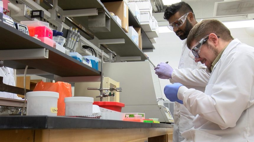 US confirms 12th coronavirus case