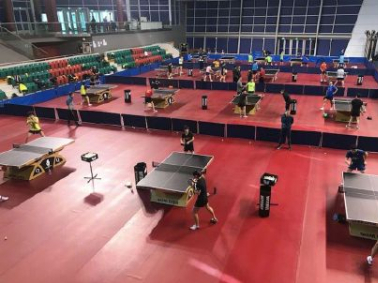 China's table tennis training canceled amid virus outbreak