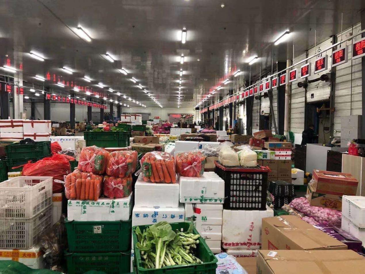 Vegetable supplies guaranteed on e-commerce platforms amid NCP outbreak