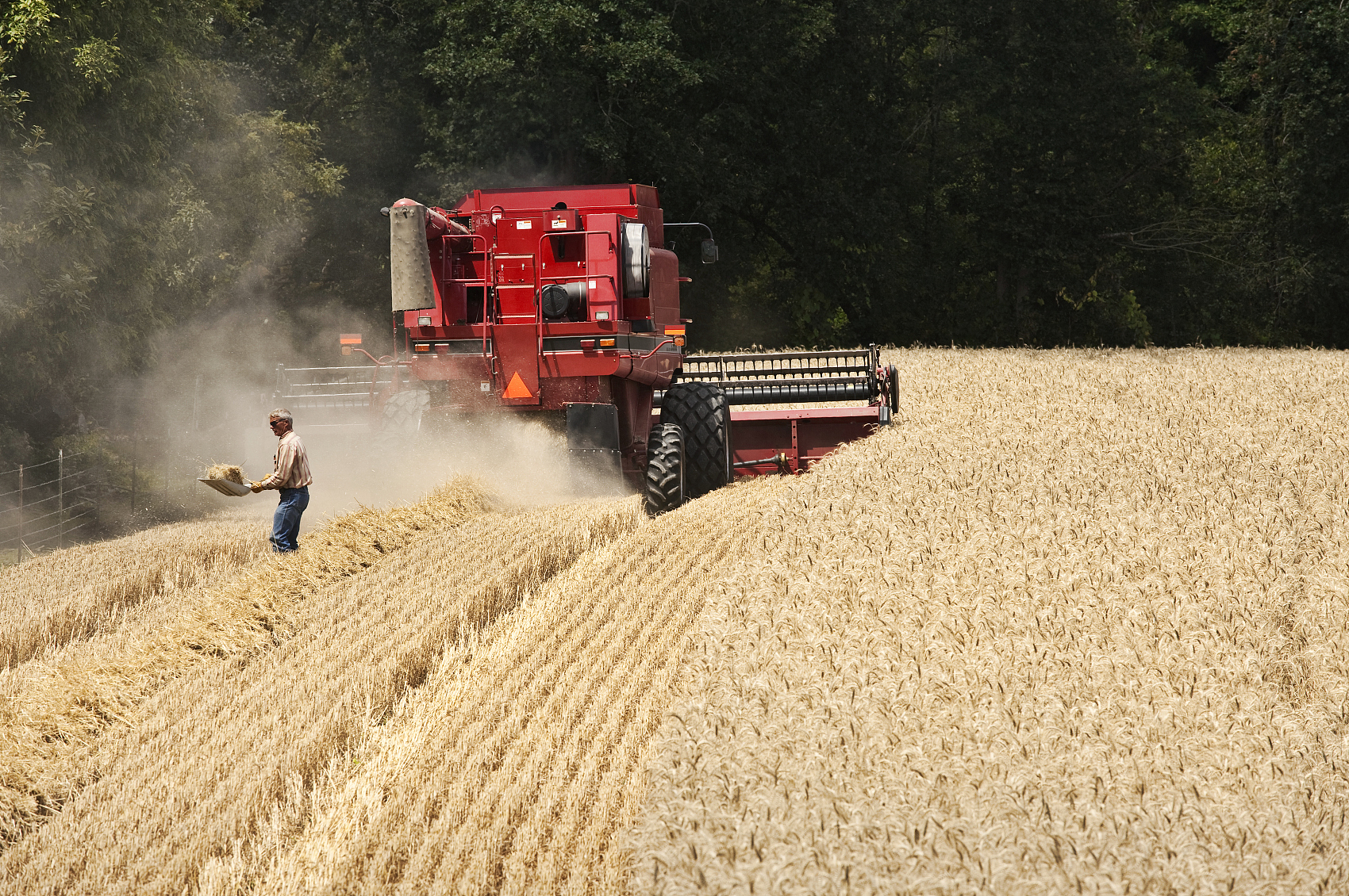 Farmers ready for spring farming to ensure grain supply amid epidemic