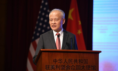 Chinese ambassador calls US senator's coronavirus weapons research comment 'absolutely crazy'