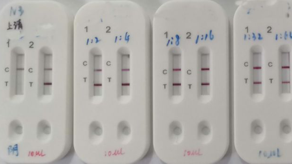 New COVID-19 detection kit delivers results in 15 minutes