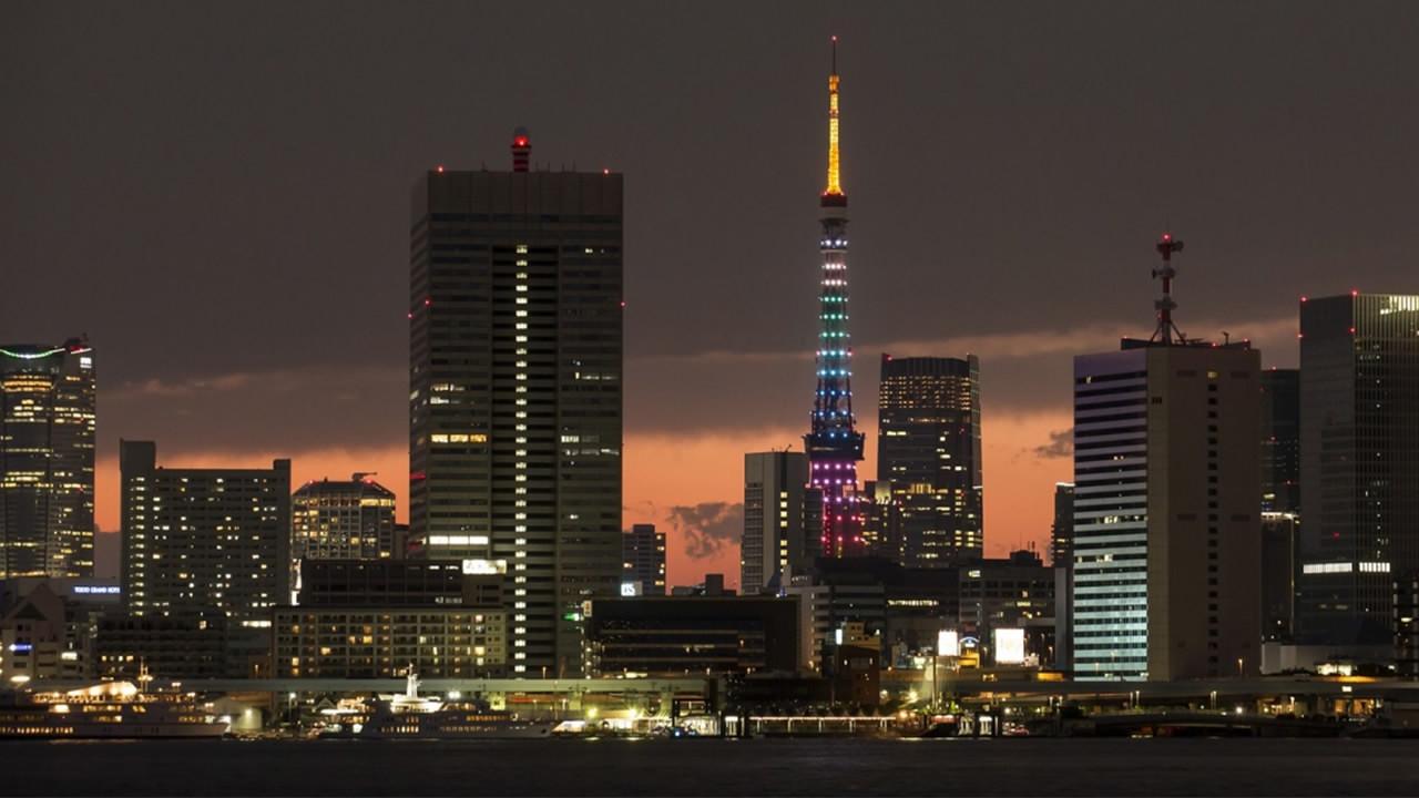 Japanese economy shrinks annualized 6.3 pct in October-December quarter: report