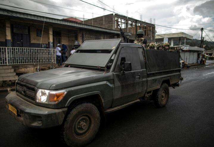 UN demands 'independent, impartial' probe of Cameroon deaths