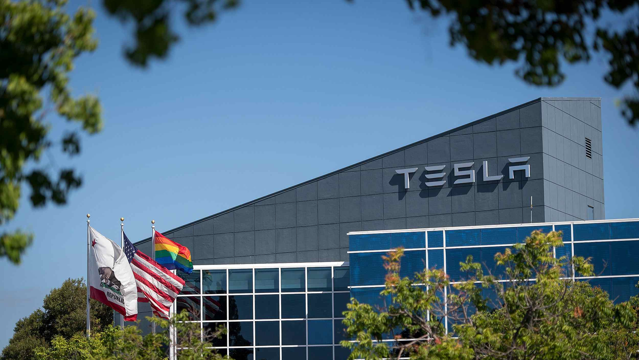 German minister welcomes court approval for Tesla to clear forest for Gigafactory