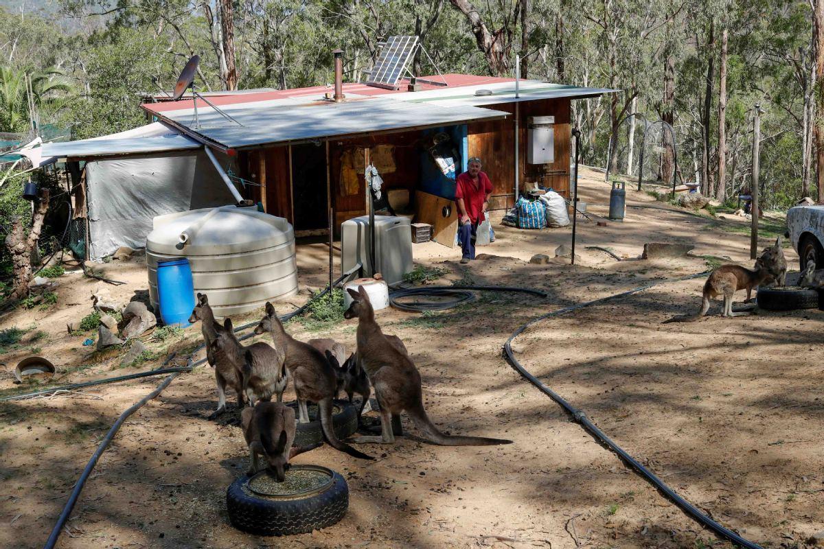 Australia fires inquiry gets under way