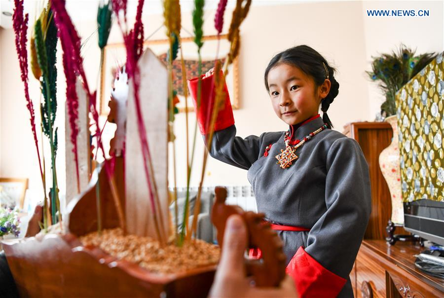 China Focus: A different Tibetan New Year amid epidemic