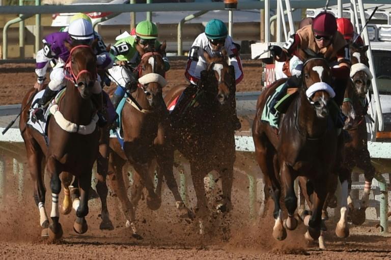 saudi horserace (afp).jpg