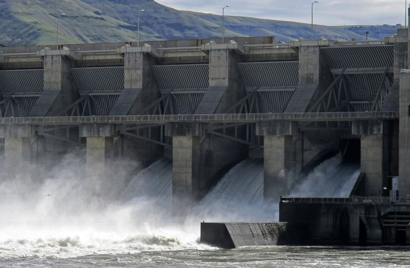 US feds reject removal of 4 Snake River dams in key report