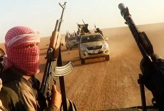 5 IS militants, 1 Hashd Shaabi member killed in Iraq's Anbar province