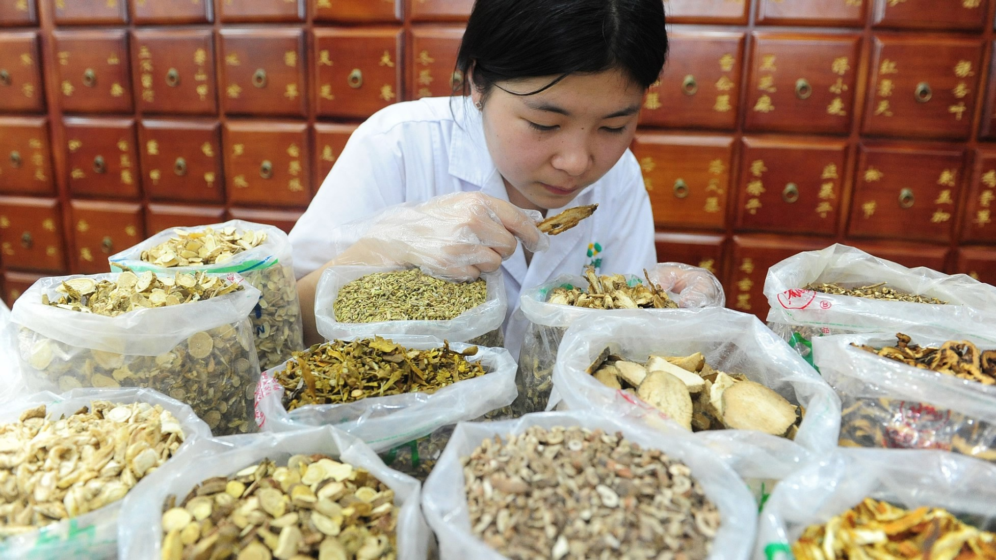 Southwest China province to increase planting of medicinal herbs
