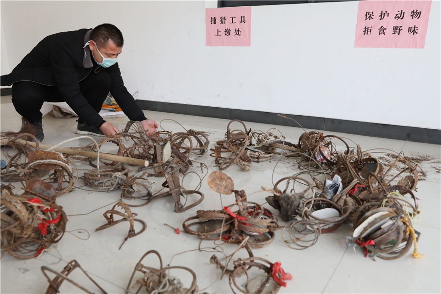 Forestry administration pledges crackdown on illegal wildlife trade