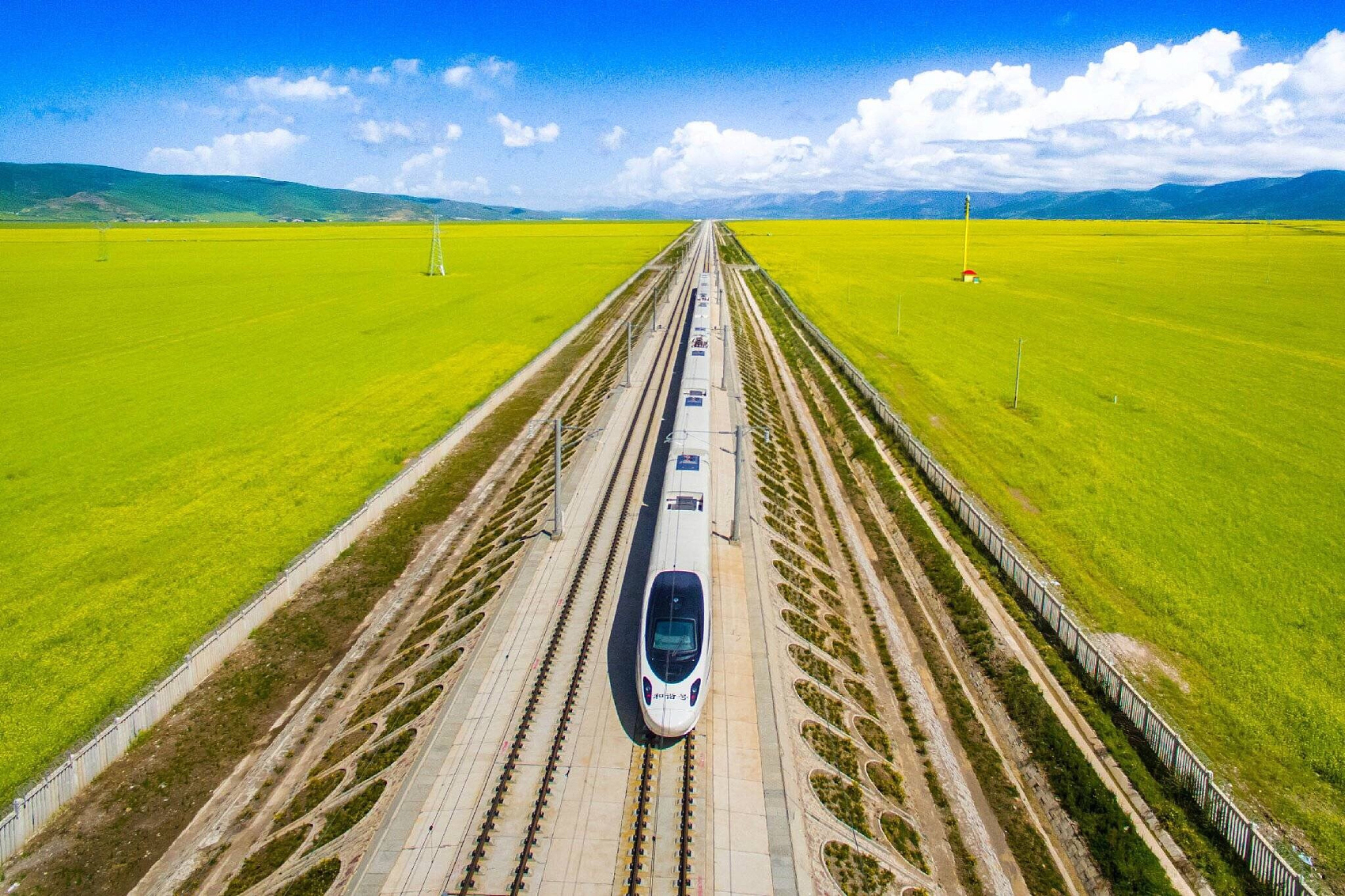 China's rolling-stock maker delivers new diesel trains to Sri Lanka