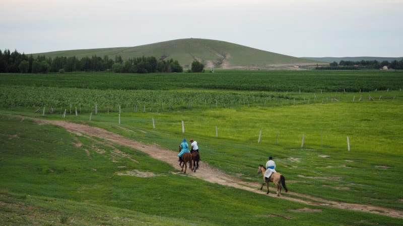 All county-level regions in China's Inner Mongolia cast off poverty