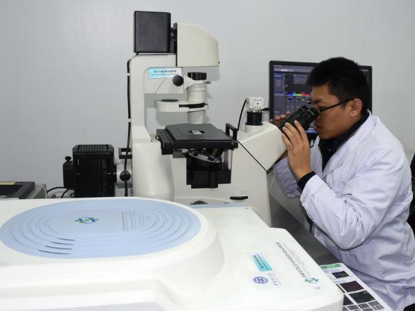 China's Jiangsu to attract 10,000 PhD graduates for postdoctoral research