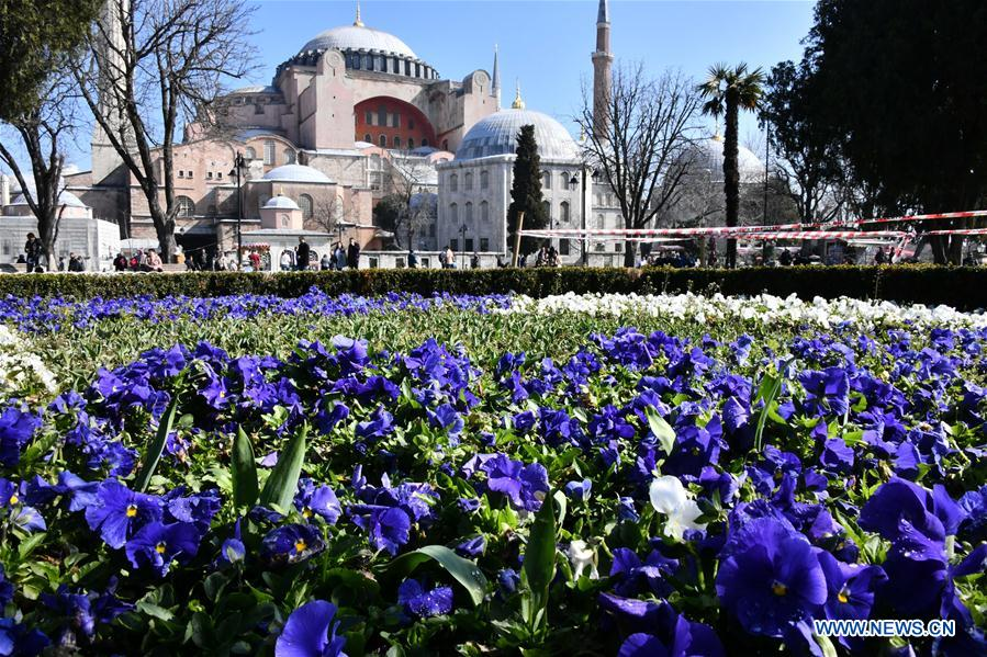 Spring in Istanbul, Turkey