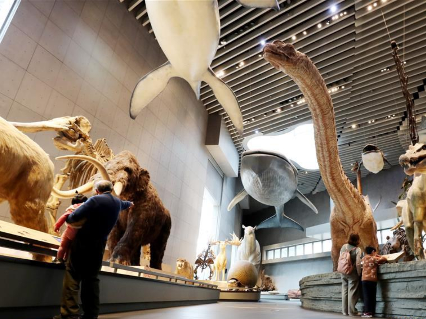 More Shanghai parks and museums reopen with strict rules in place