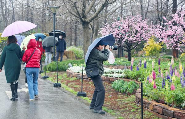 Nearly 200 parks reopen in Shanghai as epidemic recedes