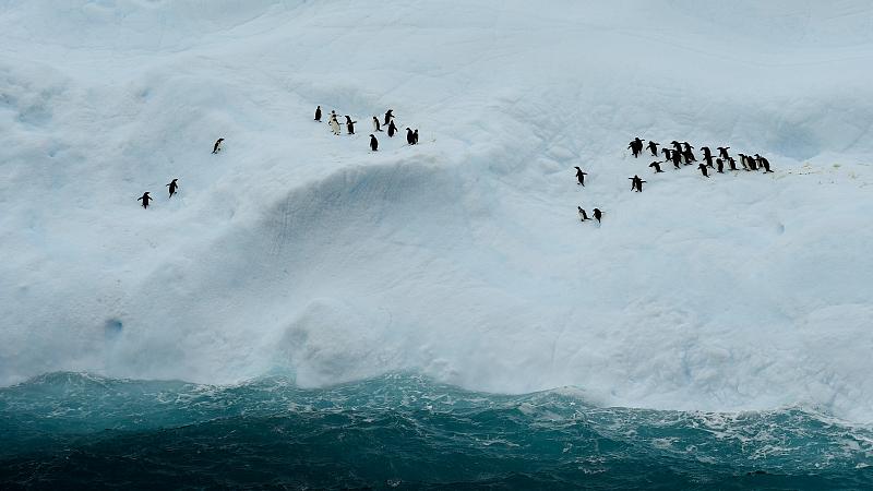 China's polar-observation satellite completes Antarctic mission