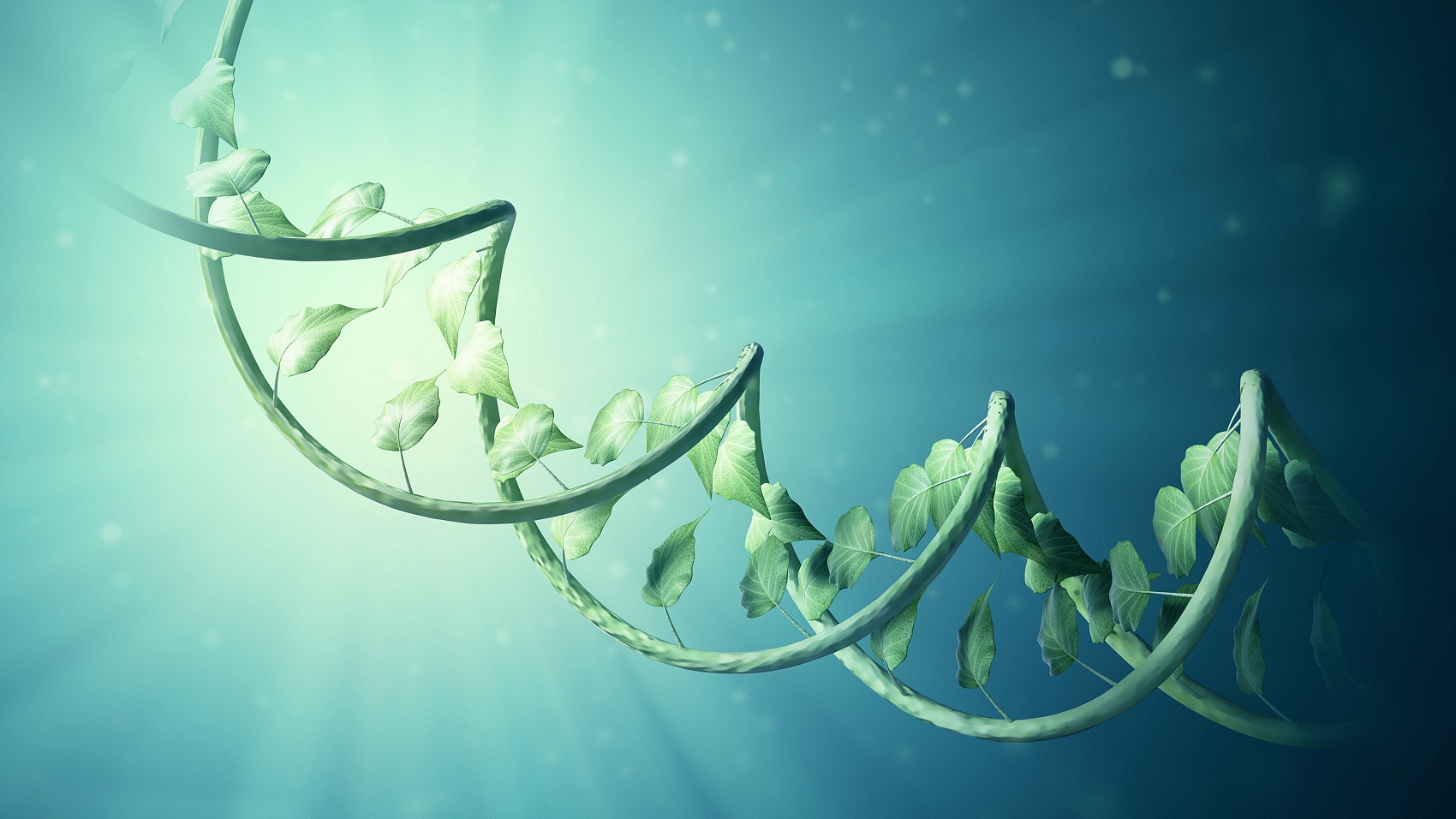 Scientists establish new plant genome engineering system