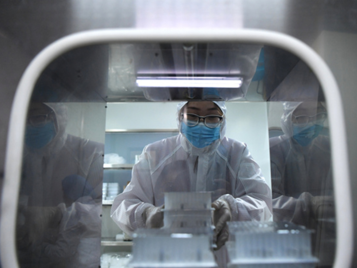 20 COVID-19 testing kits approved by China: expert