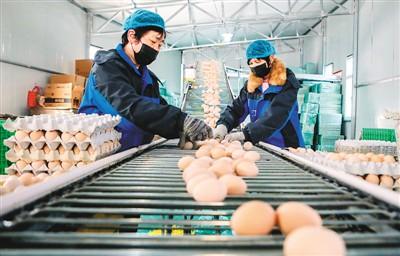 China balances market supply and demand amid the epidemic