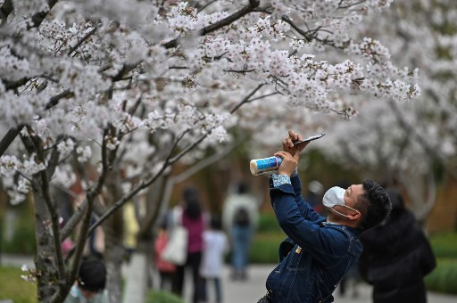 Many Chinese willing to travel if epidemic ends: survey