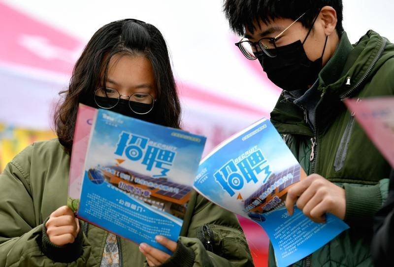 Chinese vice premier stresses employment via online platforms
