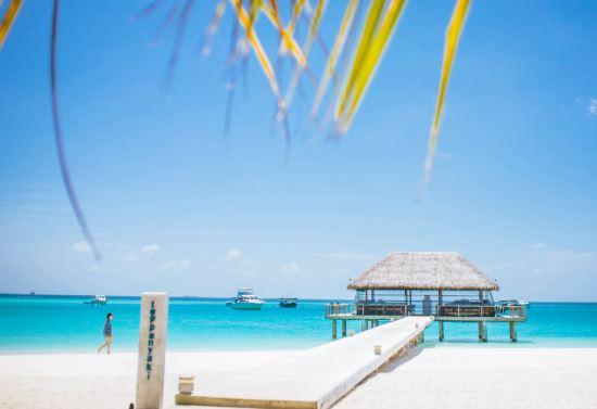 Maldives to suspend on-arrival visas amid COVID-19 outbreak
