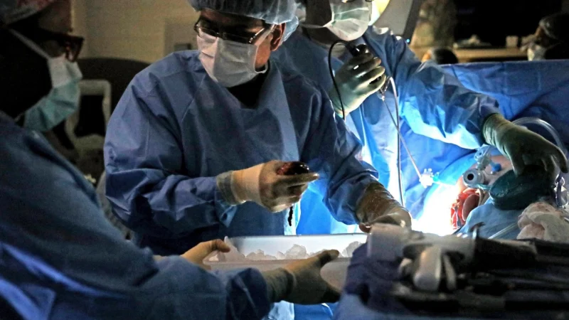 Organ transplants suspended in Australia due to COVID-19 threat