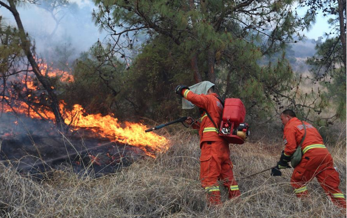 Nearly 1,000 sent to put out forest fire in China's Yunnan